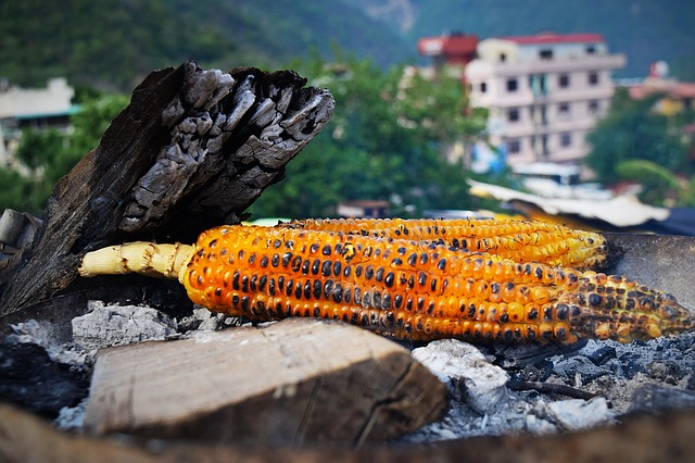 Spicy roasted corn is a must try thing in short break to nainital